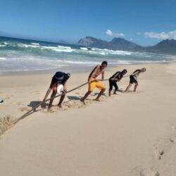 Strong young boys pulling tall sea bamboo from the sand