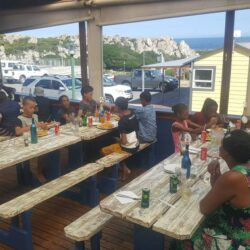Ultimate reward: fish and chips at Kleinmond Harbour